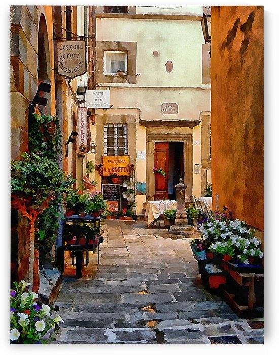 Floral Courtyard Cortona Tuscany by Dorothy Berry-Lound