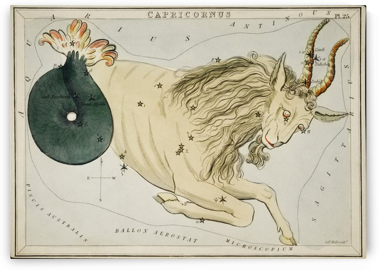 Capricorn by ABConcepts