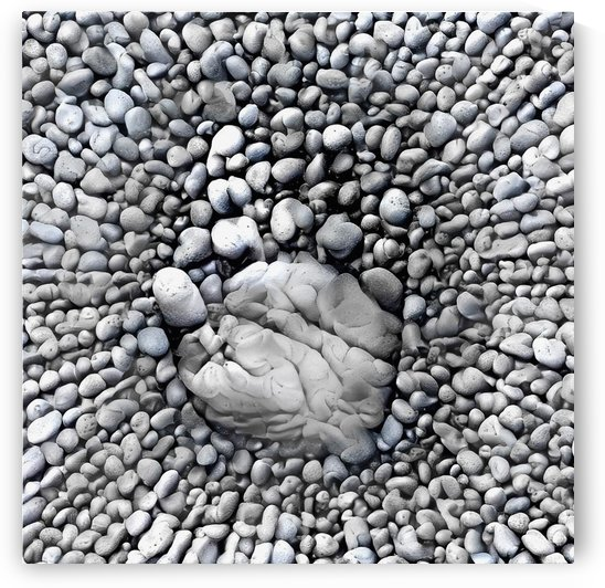 Stone Hand by Bruce Rolff