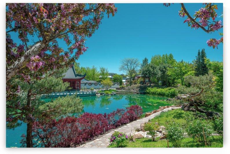 Jardin chinois Montréal by Jean-Louis Desrosiers