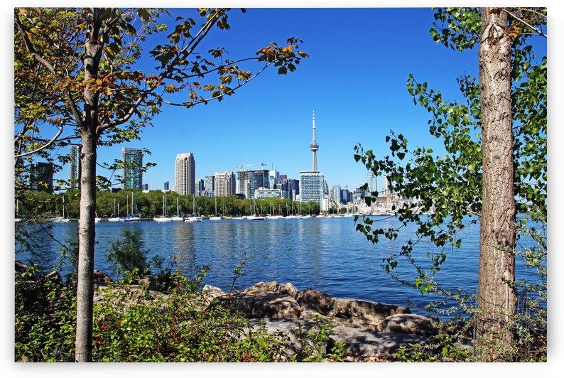 Toronto Waterfront by Deb Oppermann