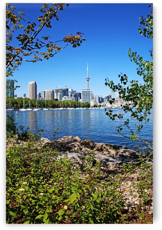 Toronto Waterfront I by Deb Oppermann