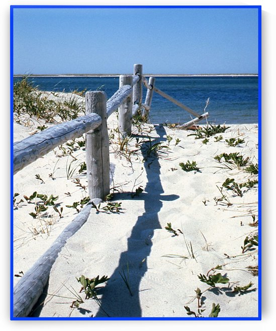 Nauset Beach Fence - Cape Cod Massachusetts by FoxHollowArt
