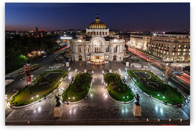 Palacio de Bellas Artes by Filippo Manaresi