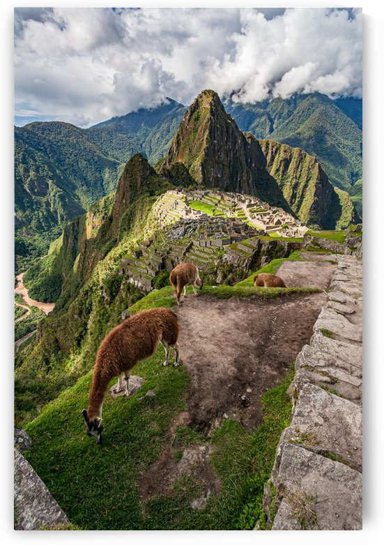 Machu Picchu by Filippo Manaresi