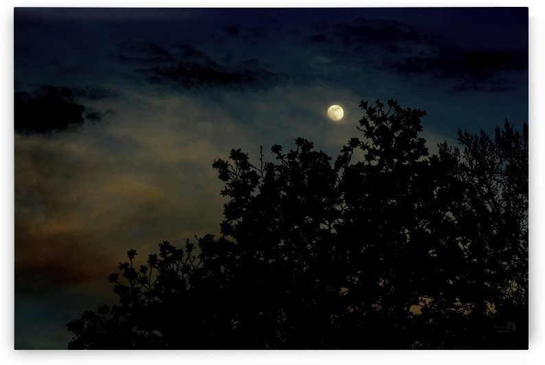 Dream moon by Sylvain Bergeron Photographies