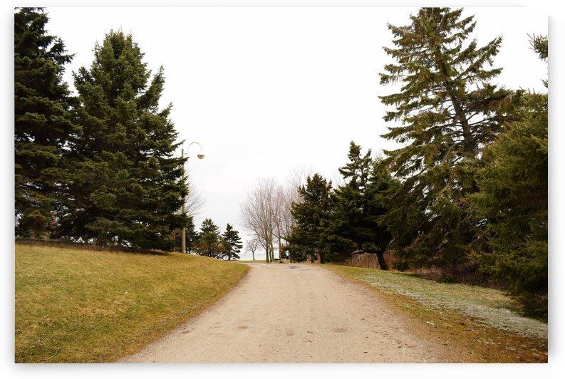 Pathway by Quiet Art