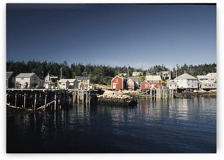 Matinicus Harbor Maine  by FoxHollowArt