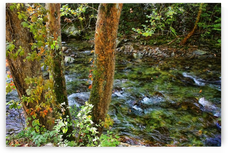 Smoky Mountain Stream by HH Photography of Florida