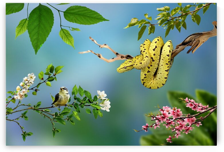 Snakes and birds by Radiy Bohem