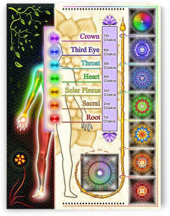 The Seven Chakras - Kundalini System by Dirk Czarnota
