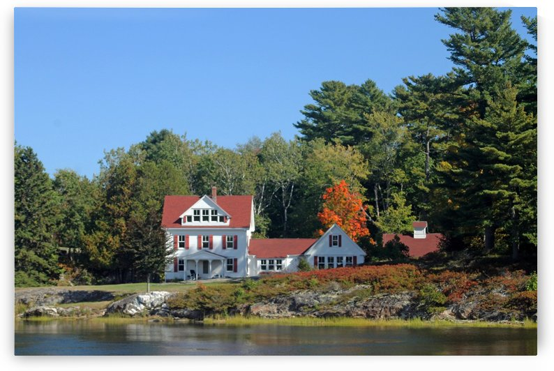 Living The Good Life - On The Shores Of Maine by FoxHollowArt