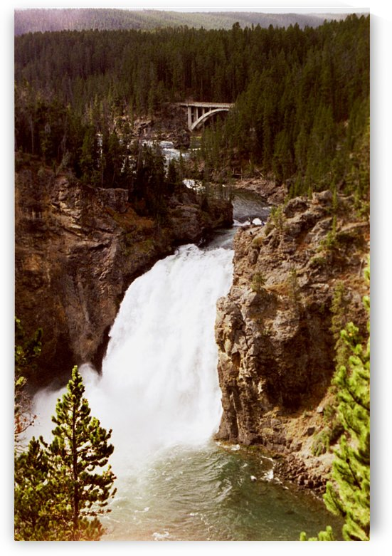 The Falls At Yellowstone National Park by FoxHollowArt