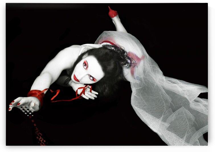 The Red Fall by Jaeda DeWalt