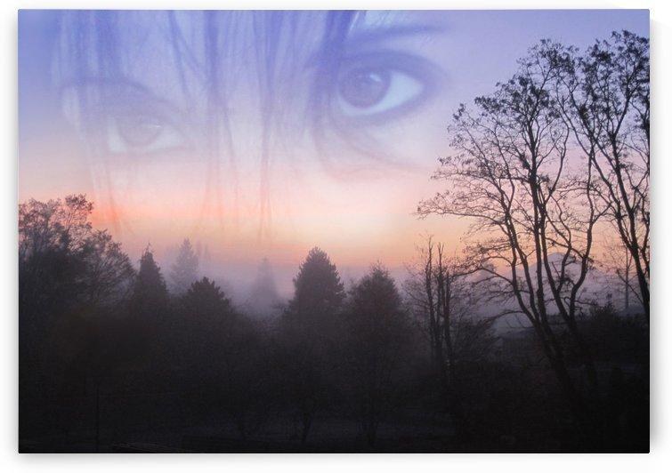 My Emotive Landscape by Jaeda DeWalt