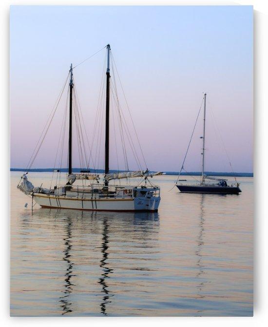 Safe Harbor by Eliot Scher