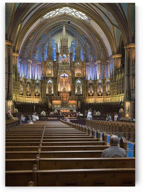 Notre Dame by Eliot Scher