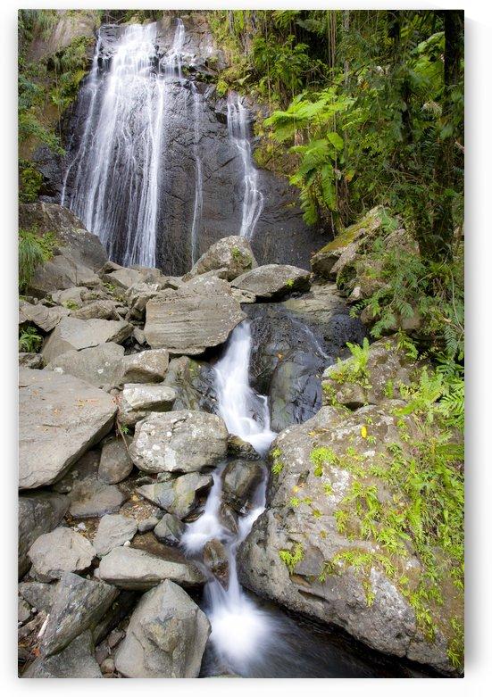 El Junque Waterfall by Eliot Scher