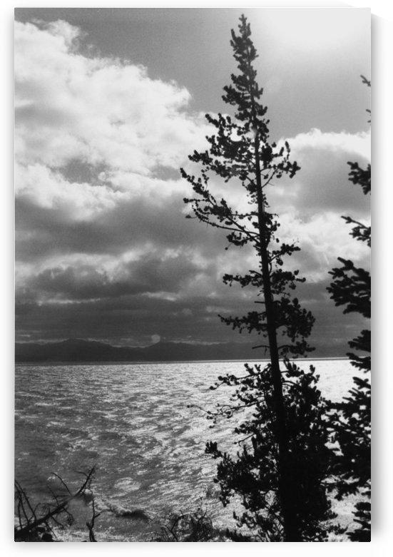 Yellowstone Lake - Yellowstone Wyoming by FoxHollowArt