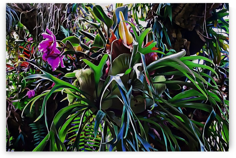 Stag Horn And Orchid Fantasy Garden by Dorothy Berry-Lound