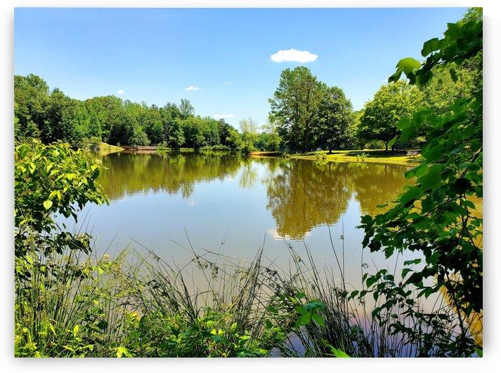 Lake Side Views by The NC Geek