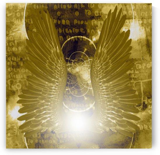 Angel Wings by Bruce Rolff