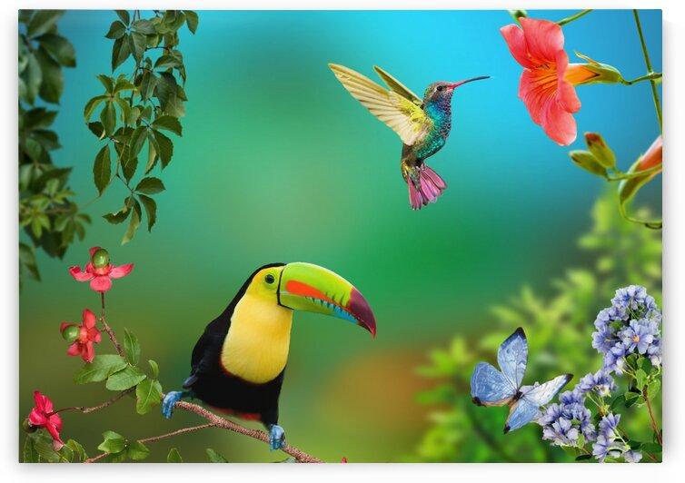 The joy of life. Tropics. by Radiy Bohem
