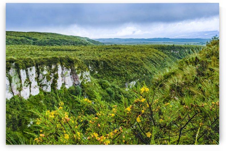 Cotopaxi National Park   Ecuador by Daniel Ferreia Leites Ciccarino