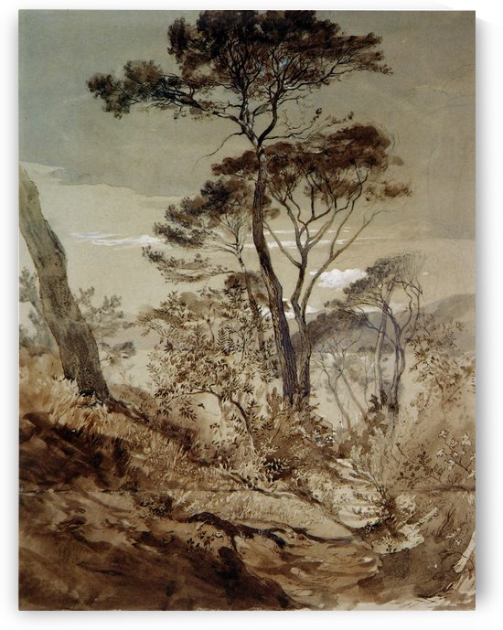 Stone Pines at Sestri by John Ruskin