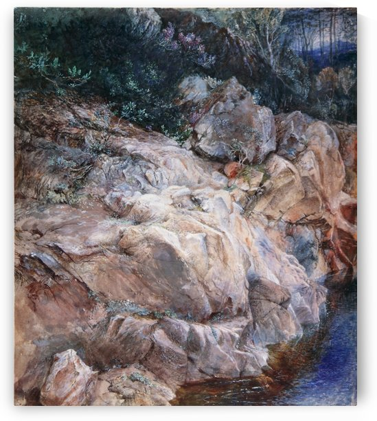 In the Pass of Killiecrankie by John Ruskin