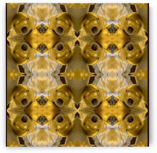Fish in Conversation by Hazz Brad