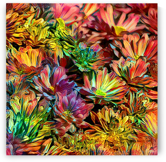 Rainbow Floral by HH Photography of Florida