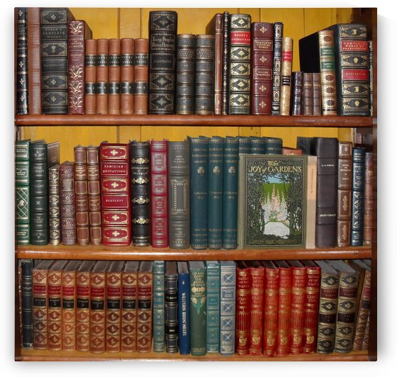 books library bookshelf bookshop by Shamudy