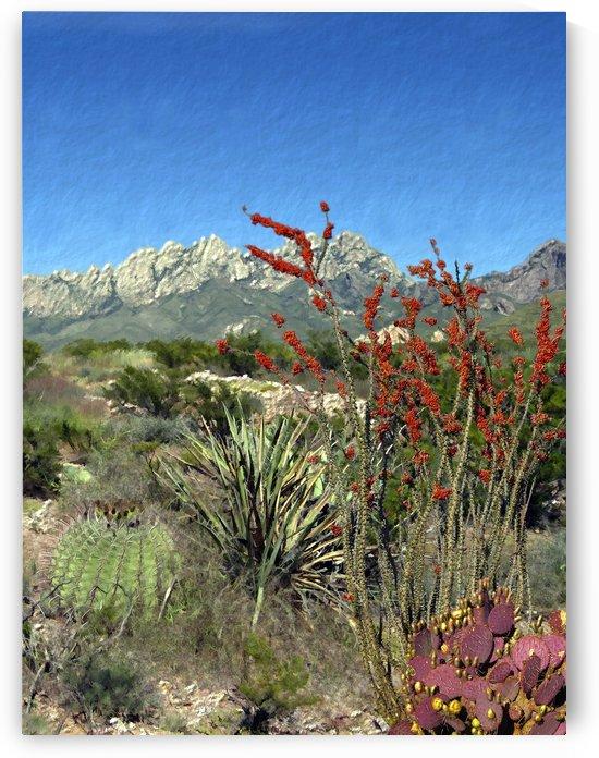 Desert Bloom  by Kurt Van Wagner