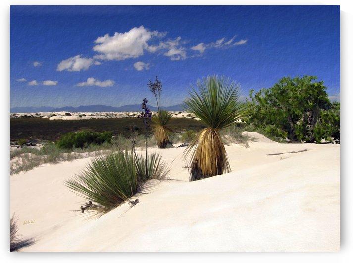 White Sands  by Kurt Van Wagner
