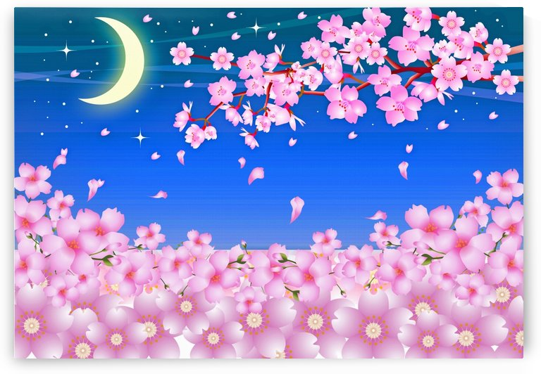 sakura cherry blossom night moon by Shamudy
