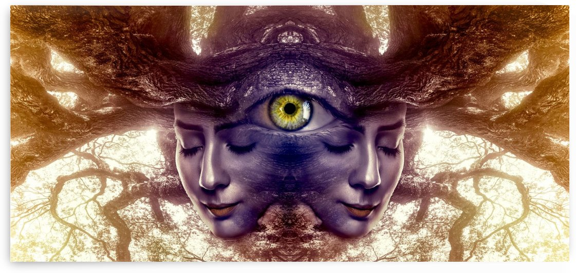 fantasy portrait twin symmetrically by Shamudy