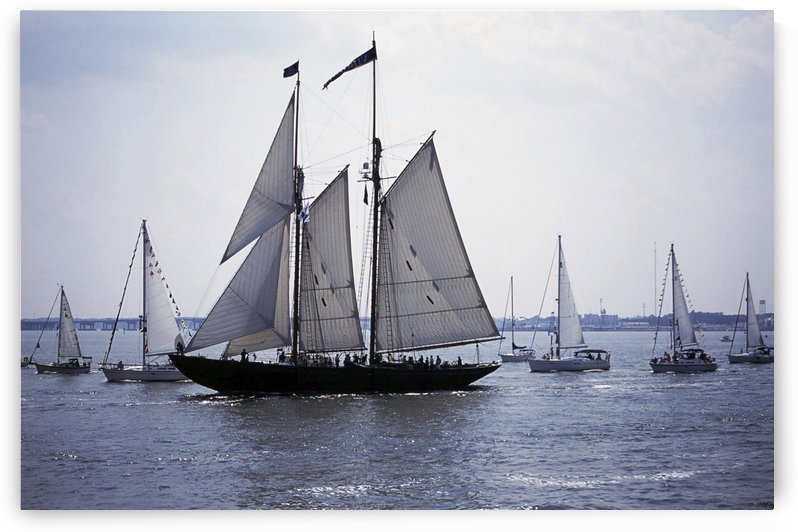Blue Nose 2 Norfolk Virginia USA by Atelier Knox