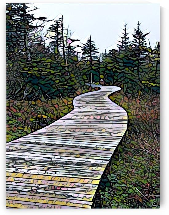 Octagon Pond Paradise Newfoundland by Sherry Reynard