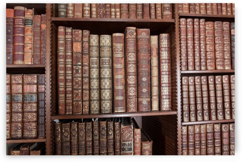 library books knowledge by Shamudy