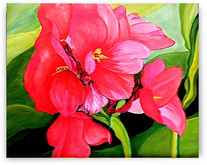 Trudies Red Cannas  by Nicos Karousatos