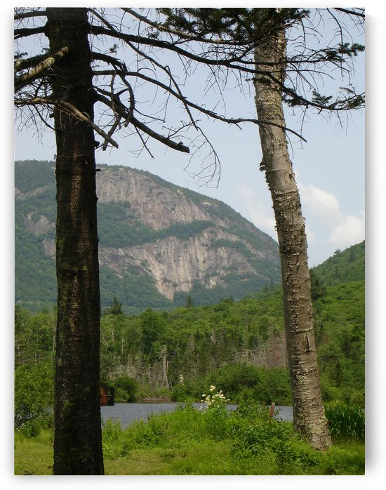 Mount Willard From Willey Pond Grawford Notch New Hampshire by FoxHollowArt