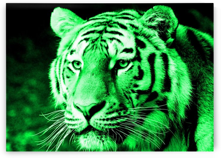 Tiger pop green by Thula-Photography