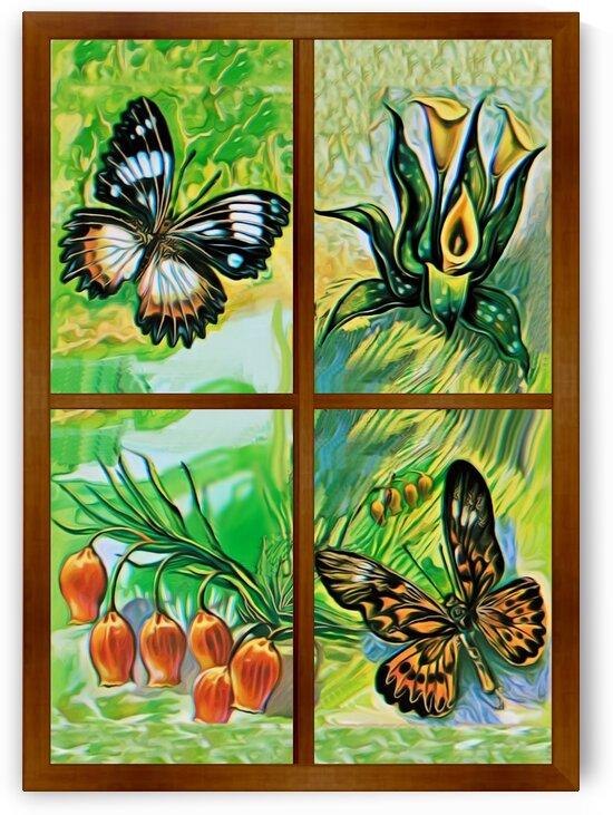 Window to world of nature 1 by Radiy