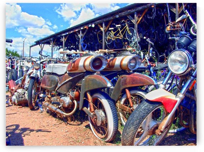 bikes by Sherry Jones