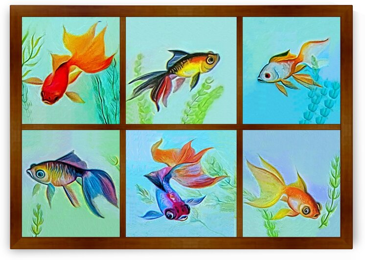 Fish Collection by Radiy