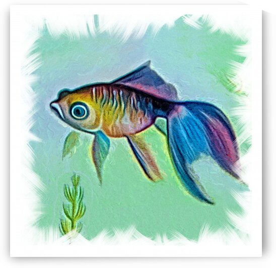 akvafish2 by Radiy
