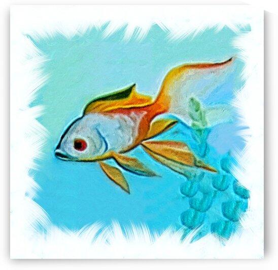 akvafish4 by Radiy