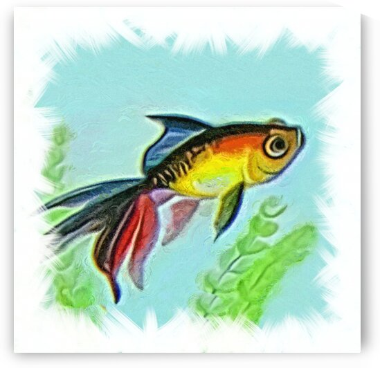 akvafish6 by Radiy