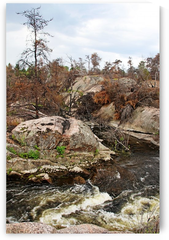 Pickerel River Outlet Rapids I by Deb Oppermann